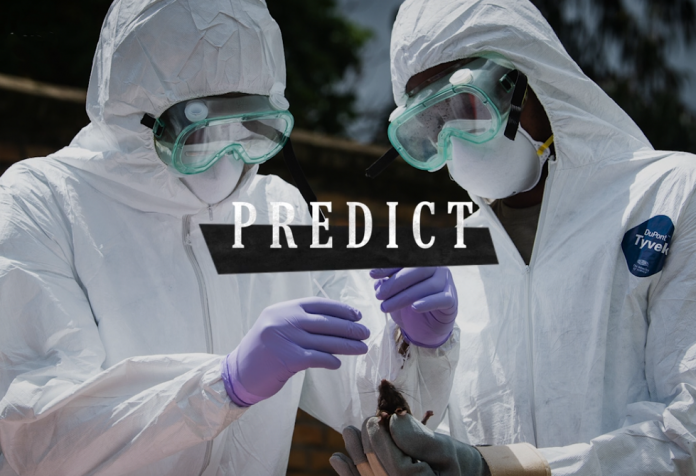 US International Pandemic PREDICT programme