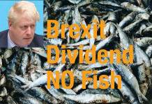 Brexit dividend NO fish