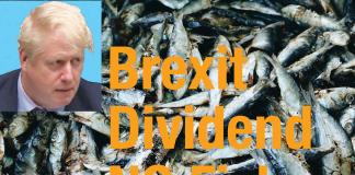 Brexit dividend NO fish